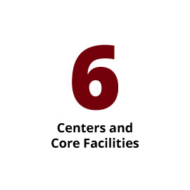 Infographic: 6 Centers and Core Facilities